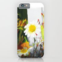iPhone & iPod Case featuring daisies by bsvc