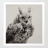 Owl | Fig. 03 Art Print