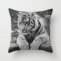 Amur Tiger Cub Throw Pillow