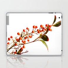 A Fruitful Life Laptop & iPad Skin