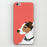 Dog - Jack Russell iPhone & iPod Skin