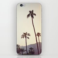 Palm Trees in the Desert iPhone & iPod Skin