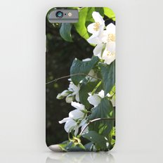 Spring Glow iPhone 6 Slim Case
