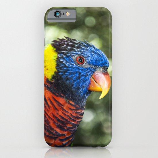 Lorikeet iPhone & iPod Case