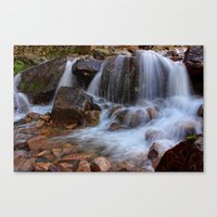 A Force To Be Reckoned W… Canvas Print