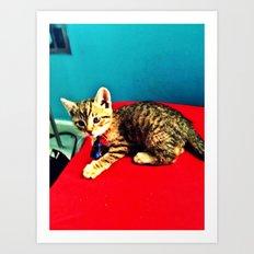 Kitters Art Print