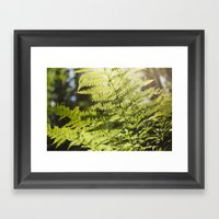 Sun Leaf Framed Art Print