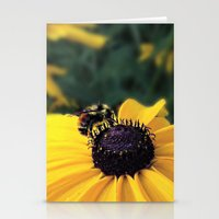 Lone Bee Stationery Cards