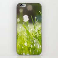 grassy morning iPhone & iPod Skin