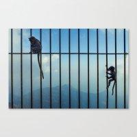 India - Monkey Bars Canvas Print