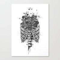 New life (b&w) Canvas Print