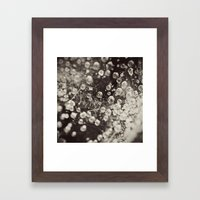 Caught In A Spiders Web Framed Art Print