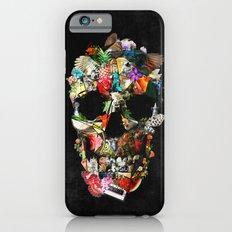 Fragile B iPhone 6 Slim Case