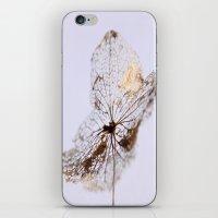 Delicate  - JUSTART © iPhone & iPod Skin