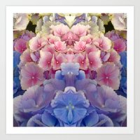 Hydrangeas On Parade Art Print