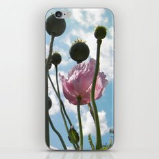 Poppies in the Sky iPhone & iPod Skin