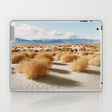 Paiute Land Laptop & iPad Skin
