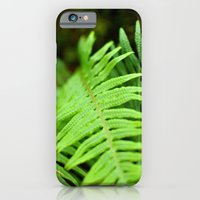 iPhone & iPod Case featuring Green fern by Charlotte Keirle