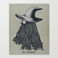 Grey Wizard Canvas Print
