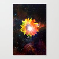 FLOWER IN THE UNIVERSE III Canvas Print