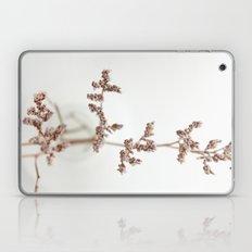 Little Secrets Laptop & iPad Skin