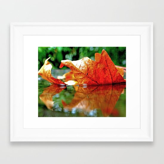Autumn leaf reflected Framed Art Print