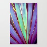 Fiesta Palm Canvas Print