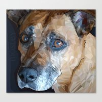 Mosley Dog Canvas Print