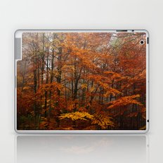 Orange Leaves Trees Forest Color Photo Laptop & iPad Skin