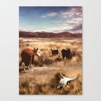 Three Cows Considering Canvas Print