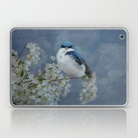 Tree Swallow Laptop & iPad Skin