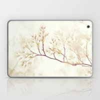 Soft Spring Whisper Laptop & iPad Skin