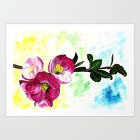 Blossom Spray Art Print