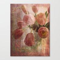 peach tulips Canvas Print
