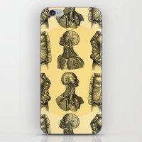 Human Anatomy Pattern iPhone & iPod Skin