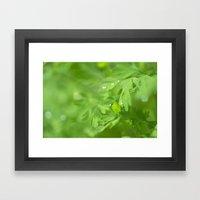 Fresh Morning 415 Framed Art Print
