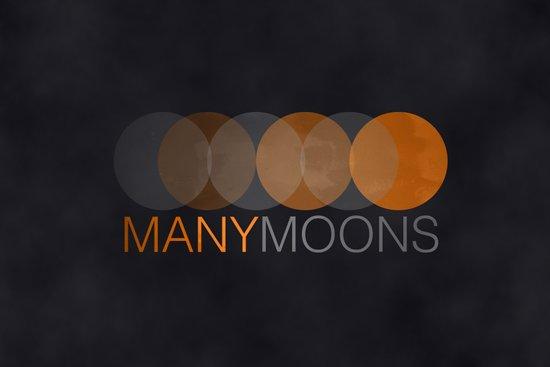 ManyMoons Canvas Print