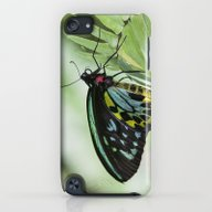 Birdwing Butterfly iPod touch Slim Case