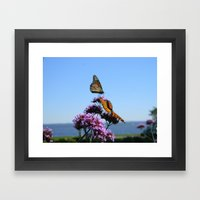 velvet butterflies Framed Art Print