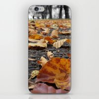 Autumn paths iPhone & iPod Skin