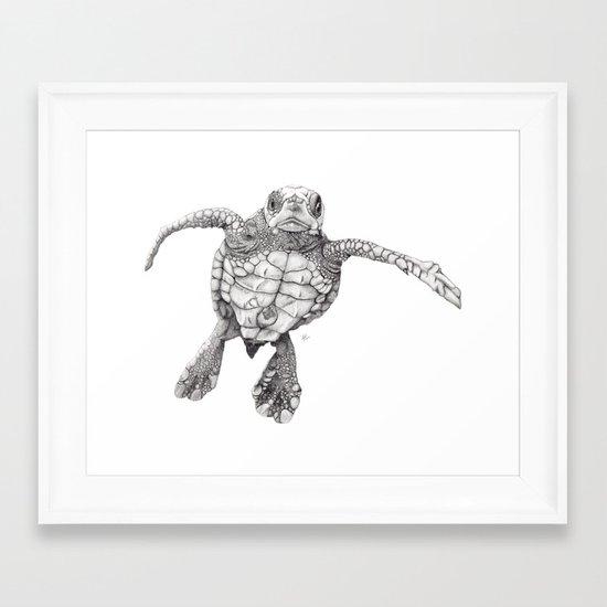 Chelonioidea (the turtle) Framed Art Print