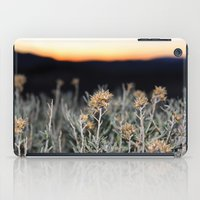 Sagebrush iPad Case