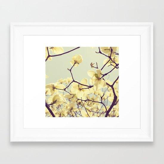 Magnolia Dream Framed Art Print