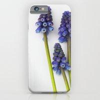 Muscari - Blue Grape - J… iPhone 6 Slim Case