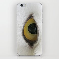 In the eye of a snow owl iPhone & iPod Skin