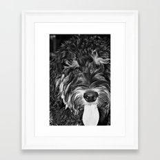 Scout... Framed Art Print
