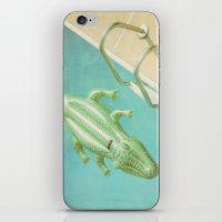 Alligator Ladder iPhone & iPod Skin