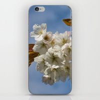 White Cherry Blossom iPhone & iPod Skin