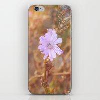 Lilac Charm iPhone & iPod Skin