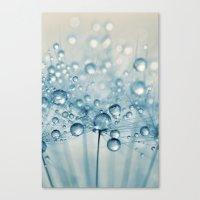 Dusky Blue Dandy Drops Canvas Print